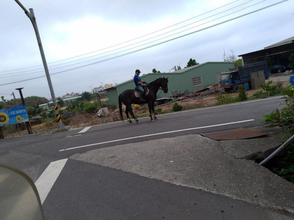 馬(車両)